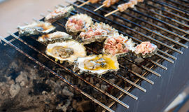 Oysters are cooked on the grill Stock Photo