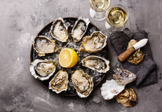 Oysters Fines de Claire and white wine Stock Images