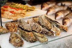 Oysters and fish on market display Royalty Free Stock Image