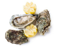 Oysters. Fresh open and closed oysters with lemon isolated on white background Royalty Free Stock Image