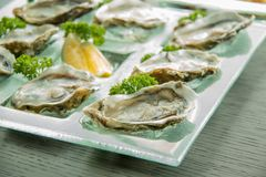 Oysters on glass plate with spicy sauce. Opened Oysters on glass plate with spicy sauce Stock Photo