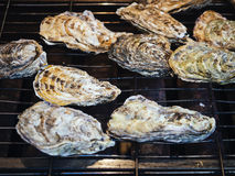 Oysters grill Fresh seafood Market Stock Photos