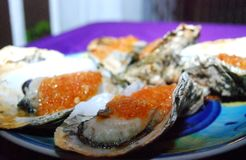 Oysters, Guangzhou, China Royalty Free Stock Photography