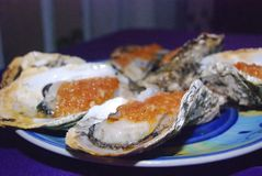 Oysters, Guangzhou, China Royalty Free Stock Images