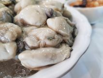 Oysters, health benefits  Enhance sexual function, stimulate the reproductive system stock photography