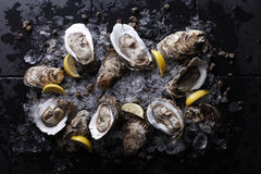 Oysters with ice and lemon Royalty Free Stock Photos