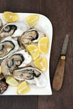 Oysters on Ice with Lemon Royalty Free Stock Images