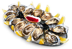 Oysters in ice with a lemon Stock Photos