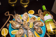 Oysters with ice and lemon Royalty Free Stock Images