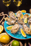 Oysters with ice and lemon Royalty Free Stock Image