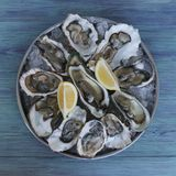 Oysters with ice and lemons on tray royalty free stock photo