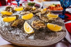 Oysters with lemon and ice on the plate. On the dinner table Stock Image