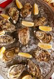 Oysters with lemon and ice on the plate. On the dinner table Stock Photo