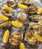 Oysters with lemon and ice on the plate. On the dinner table Stock Photography