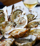Oysters with lemon Royalty Free Stock Images