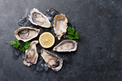 Oysters and lemon. Opened oysters, ice and lemon on stone table. Half dozen. Top view with copy space Royalty Free Stock Image