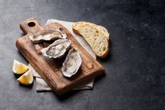 Oysters and lemon. Opened oysters, ice and lemon on wooden board over stone table. With copy space Royalty Free Stock Photos