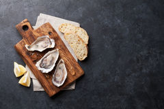 Oysters and lemon Royalty Free Stock Image