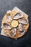 Oysters and lemon over ice Royalty Free Stock Image