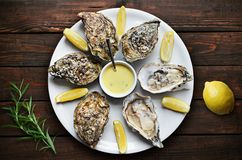 Oysters with lemon on plate Royalty Free Stock Image