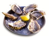 Oysters with lemon on plate Royalty Free Stock Photography