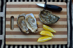 Oysters and lemons Royalty Free Stock Images