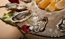 Oysters with lemons   chinese restaraunt. Oysters with lemons. On  special   plate  with lemon slices. International dish  chinese restaraunt stock image