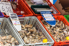 Oysters market in Cancale, France Stock Image