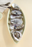 Oysters Natural Stock Images