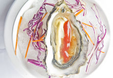Oysters. Oyster food in changsha Hunan China Royalty Free Stock Images