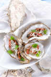 Oysters with parmesan and baked tomatoes Royalty Free Stock Photos