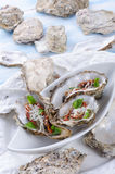 Oysters with parmesan and baked tomatoes Stock Image