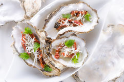 Oysters with parmesan and baked tomatoes Royalty Free Stock Photo