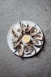 Oysters on the plate Royalty Free Stock Photo