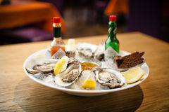 Oysters on a plate Stock Image