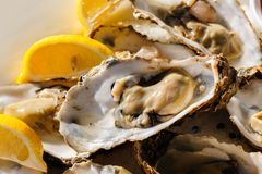 Oysters plate. Plate of oysters with lemon and special sauce Royalty Free Stock Photos