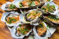 Oysters in a plate Stock Photos