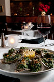 Oysters rockefeller Royalty Free Stock Photos