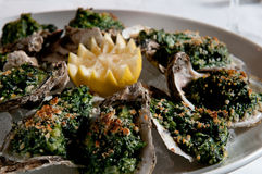 Oysters rockefeller Stock Photos