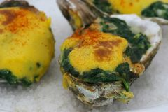 Oysters Rockefeller - Close. Oysters Rockefeller - A Traditional Dish royalty free stock images