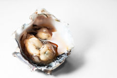 Oysters on it's shell with spicy sauce local delicacy in Trinidad and Tobago Royalty Free Stock Photography
