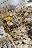 Oyster stall Royalty Free Stock Photos