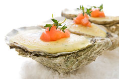 Oysters with sauce Stock Photography