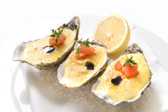 Oysters with sauce and lemon Stock Photography