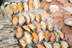 Oysters or seafood on ice at asian street market. Cooking, asian kitchen, sale and food concept - chilled oysters or seafood on ice at street market Stock Photo