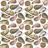 Oysters seamless pattern. Oysters watercolor hand drawn seamless pattern, isolated on white background Royalty Free Stock Photo