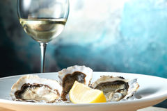 Oysters in a white plate with lemon Stock Photos