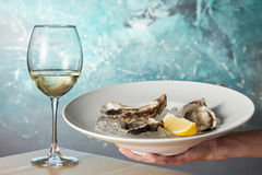 Oysters in a white plate with lemon Stock Photo