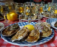 Oysters and white wine Stock Photography