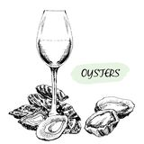 Oysters and wine glass Royalty Free Stock Image
